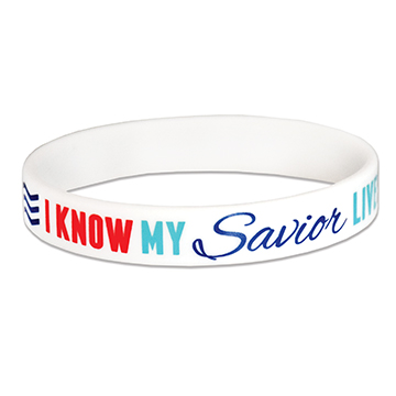 Primary Theme Wristband