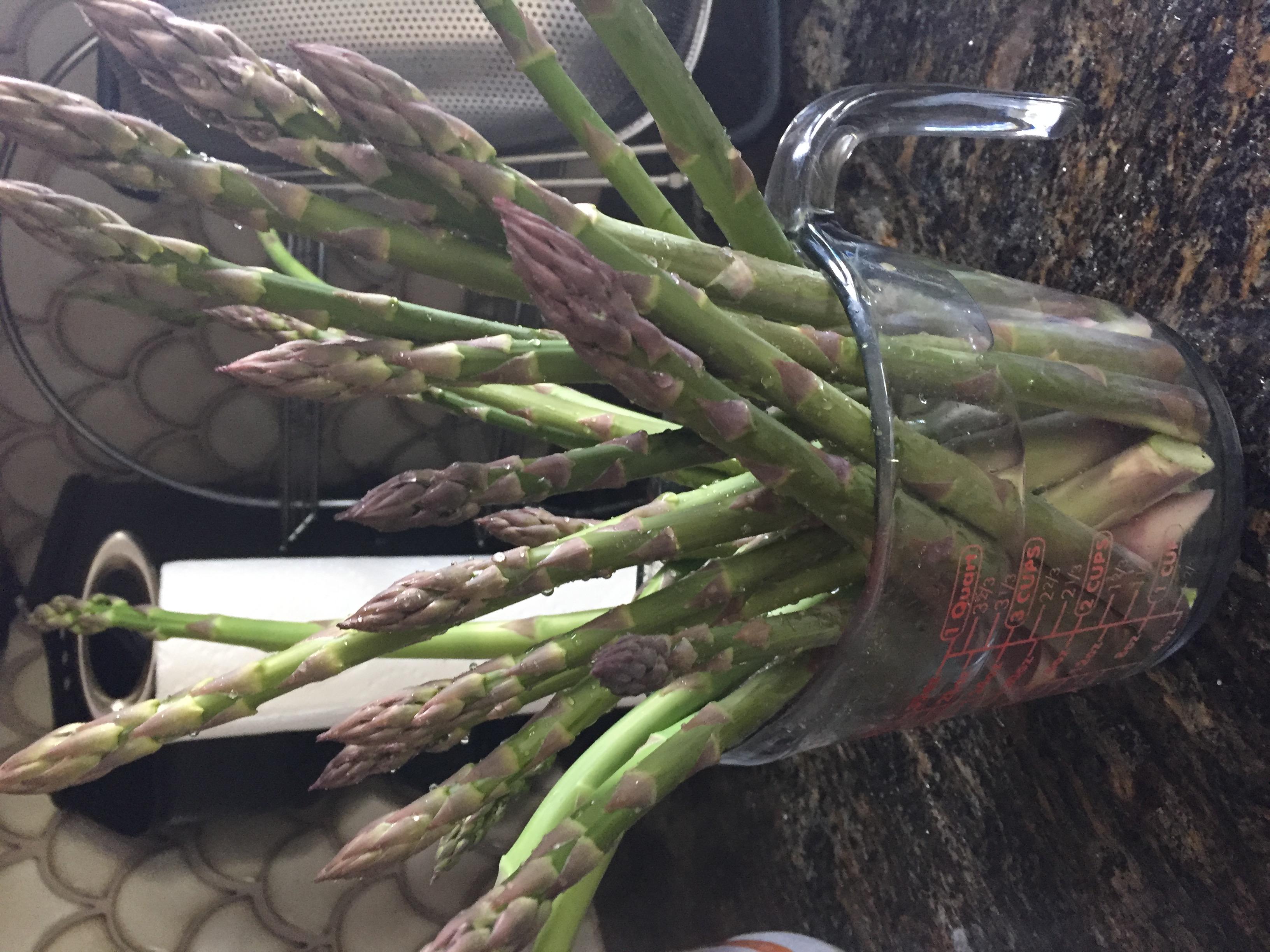 5DAA77C8 282A 4056 8E49 8EB31710626D Asparagus and Microgreens