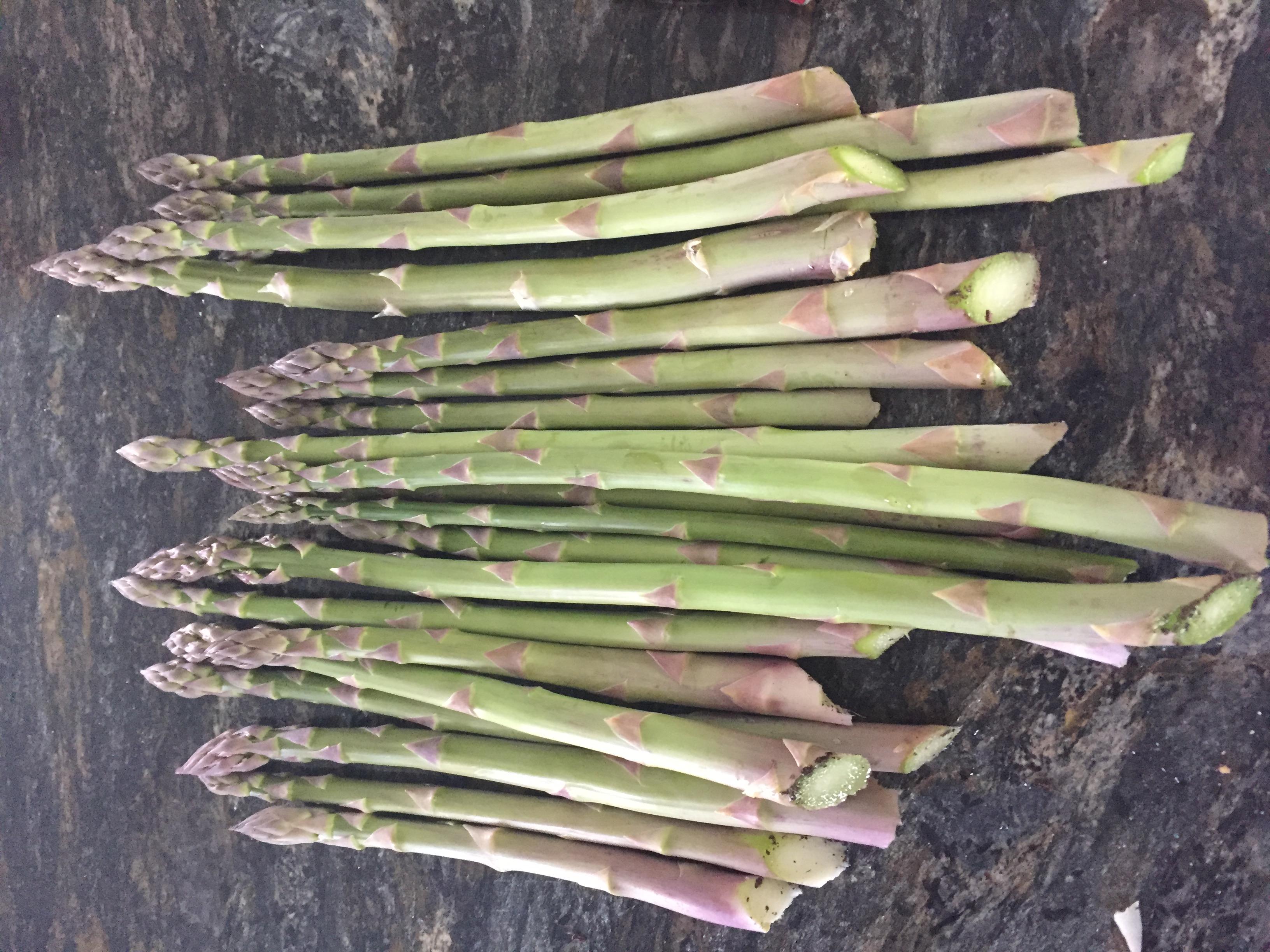 6EA19E63 9A37 4633 869D 60E4D8CB44BD Asparagus and Microgreens