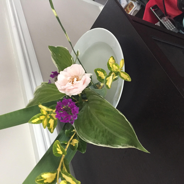 168F64D5 53ED 43FF B606 16EE942F148C My First Ikebana Arrangement