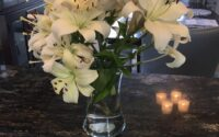 My white asiatic lilies in a vase