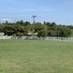 17D767DF 06F1 4654 98E1 4E9A1B3D9BAF The new fence