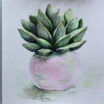 B7F74294 C1D0 48AF B42E 549E44B90D69 Succulent in a pink pot - part fôr