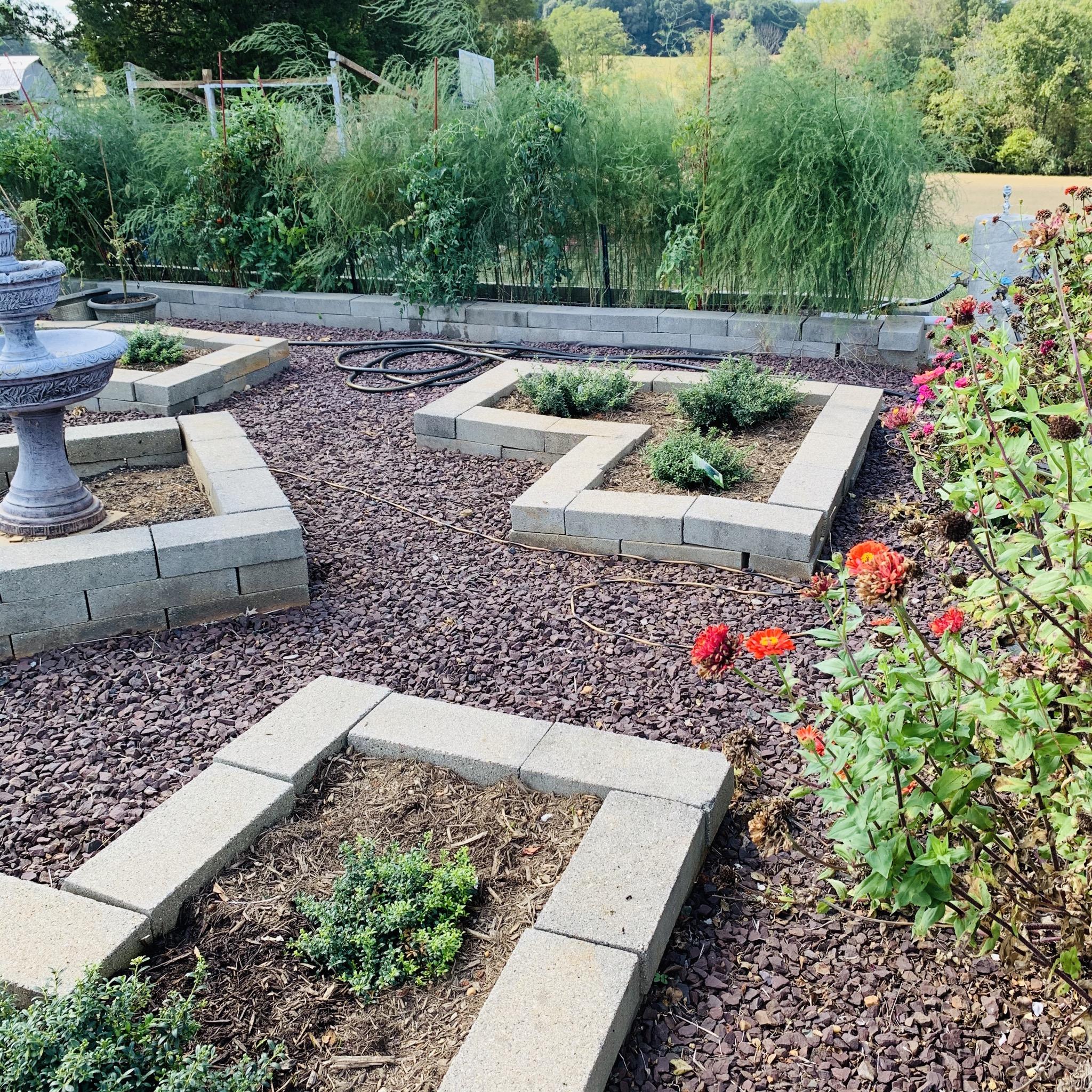 9513AF10 ED7E 4876 AB57 C3A44792B40C The garden is still producing