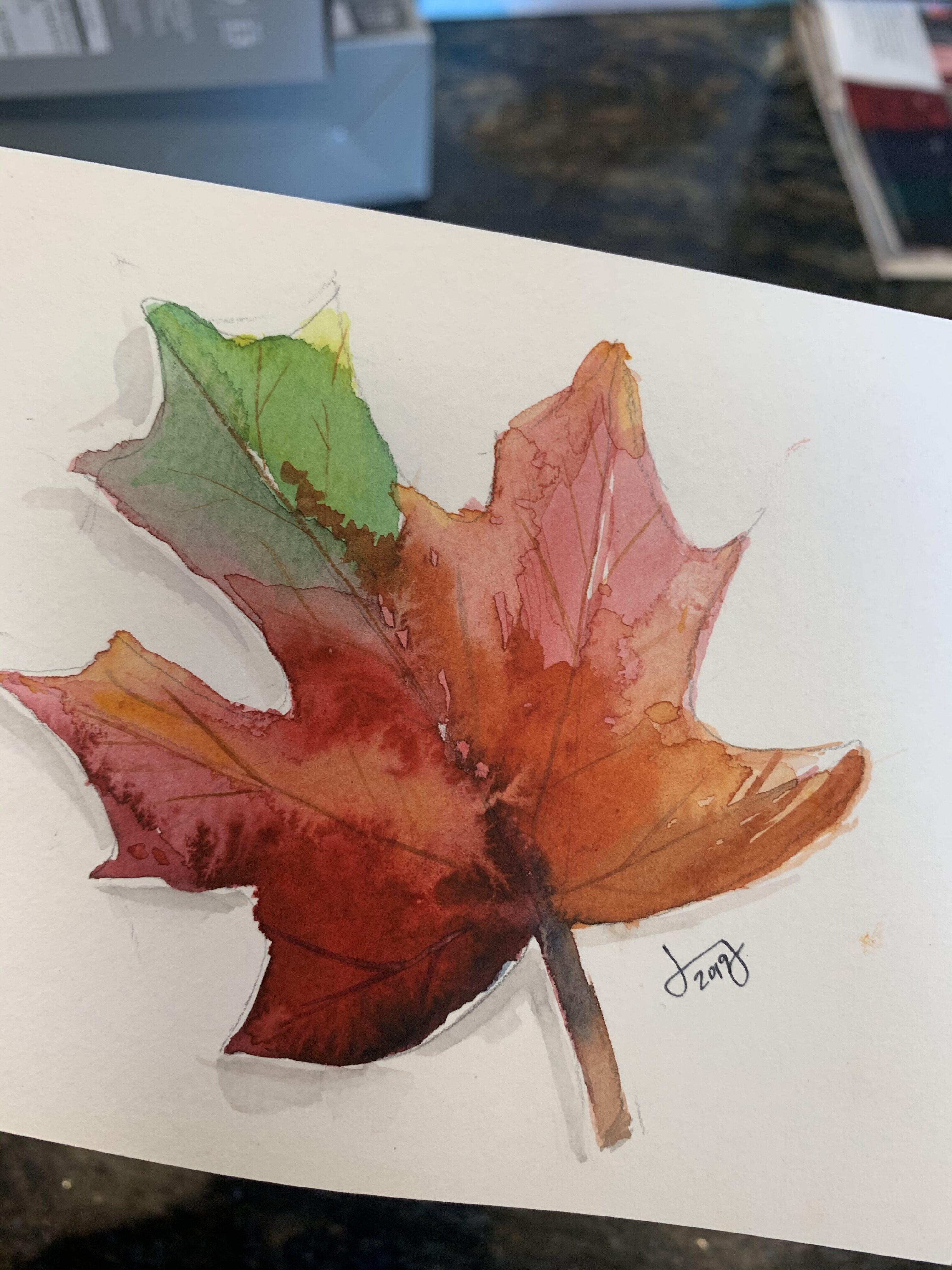 1EE5E359 8C33 4EA8 AE49 AFB4881B6631 Fall Pomegranate and leaf