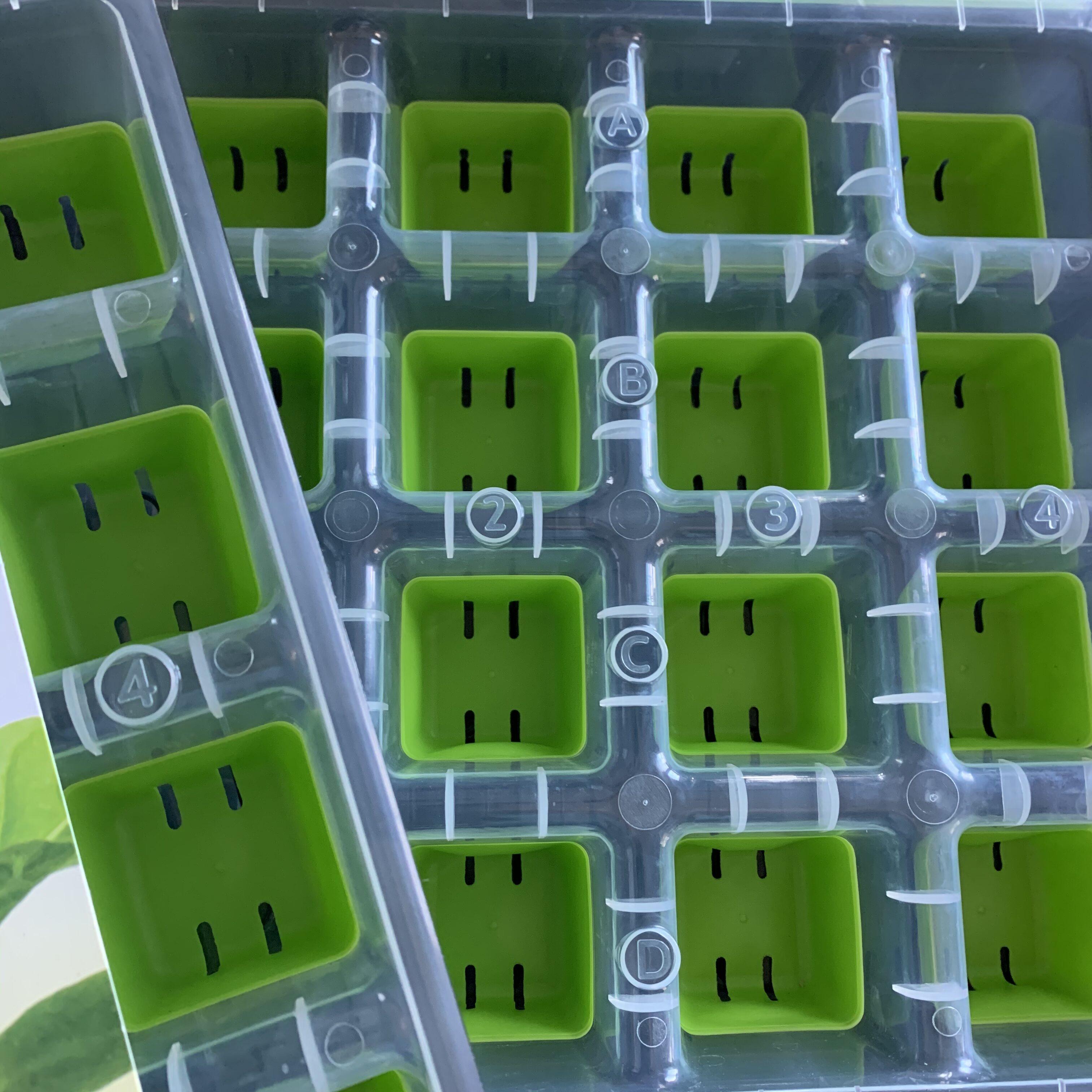 EC10DDFE B9A6 4641 8B0C DC60AC7972C2 First 2020 seeds started!