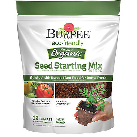 EE137021 59E4 411F A3FE F41305E14BB8 Comparing Burpee Organic Seed Starting Mix vs Miracle Gro Moisture Control Potting Mix for transplanted tomato seedlings - Results