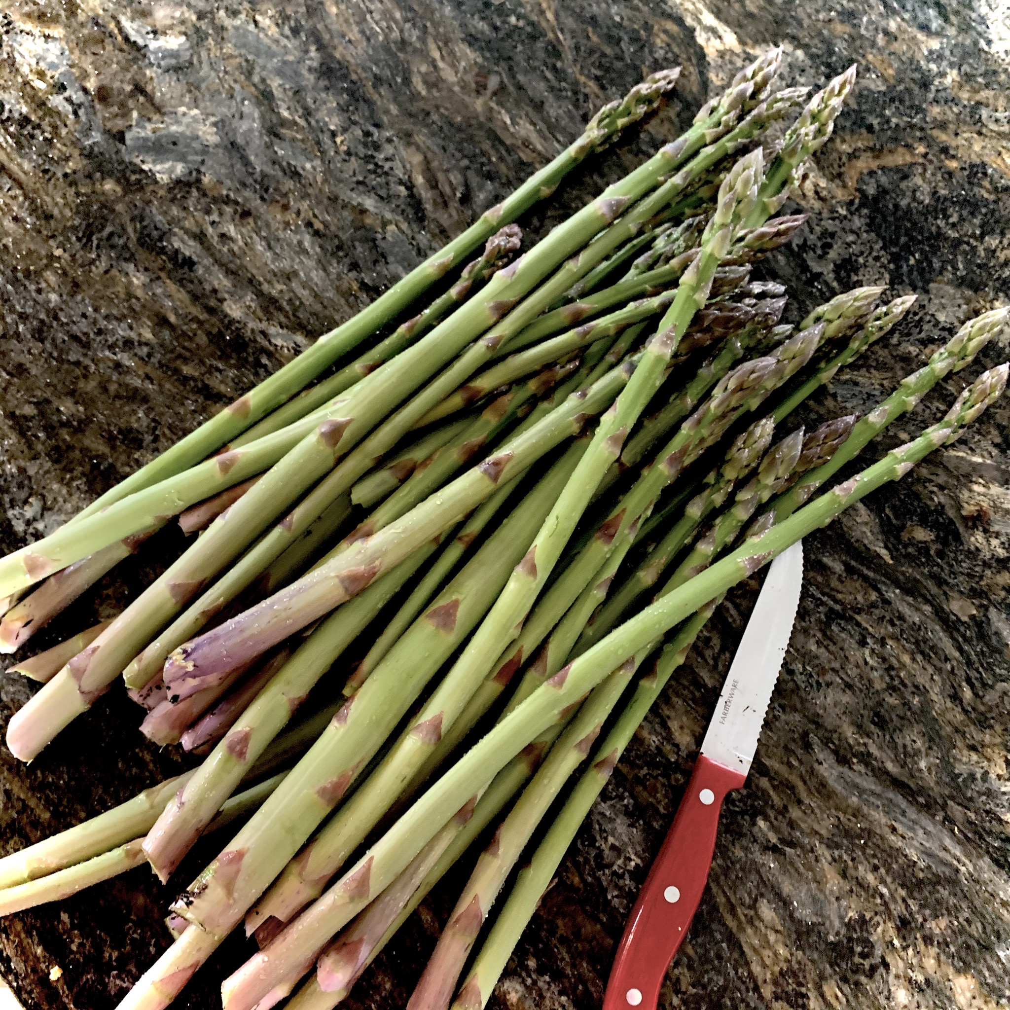 14CC218C BCE1 44F3 8466 343AD0A76273 How to double or triple your asparagus yield