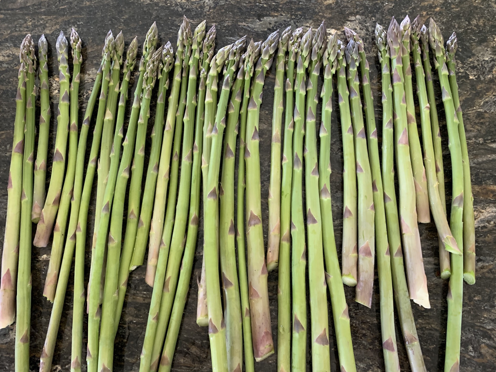 B7DBFE57 D023 442F 83EF 03ADC1A64CC0 How to double or triple your asparagus yield