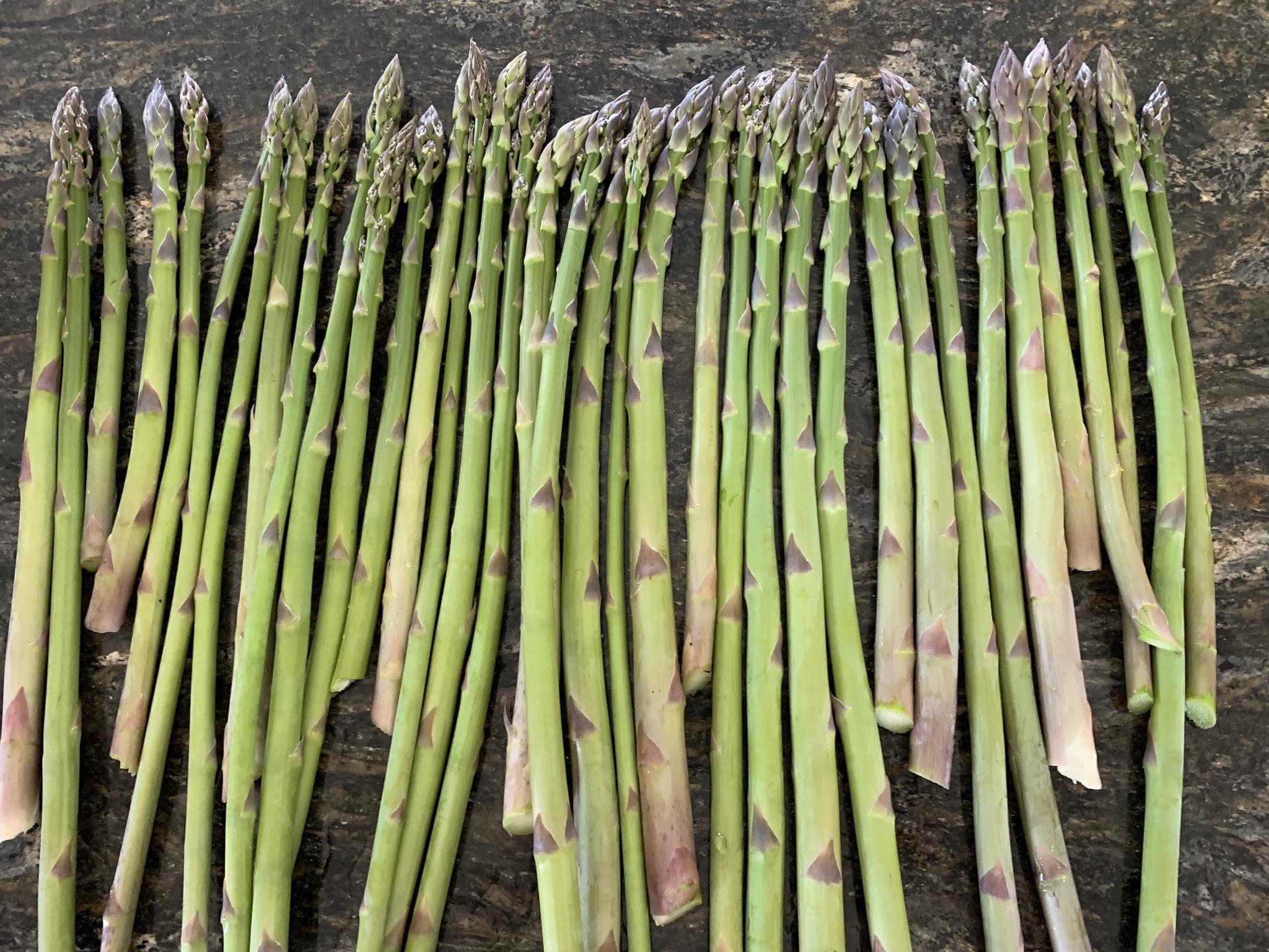 B7DBFE57 D023 442F 83EF 03ADC1A64CC0 How to double or triple your asparagus yield