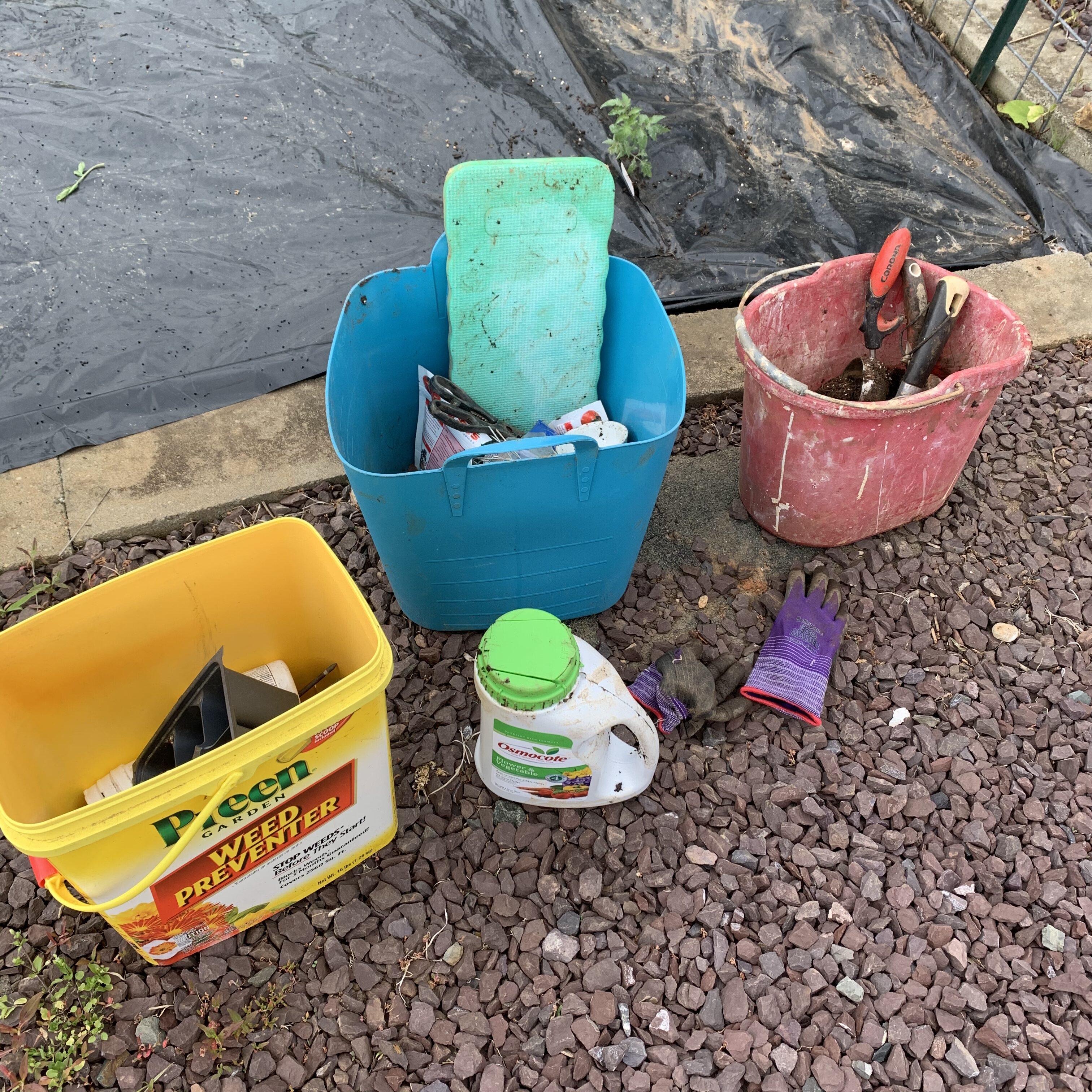 E95E33D8 5913 4F6E 9D70 3D14D7ED16E9 Tomato planting day!