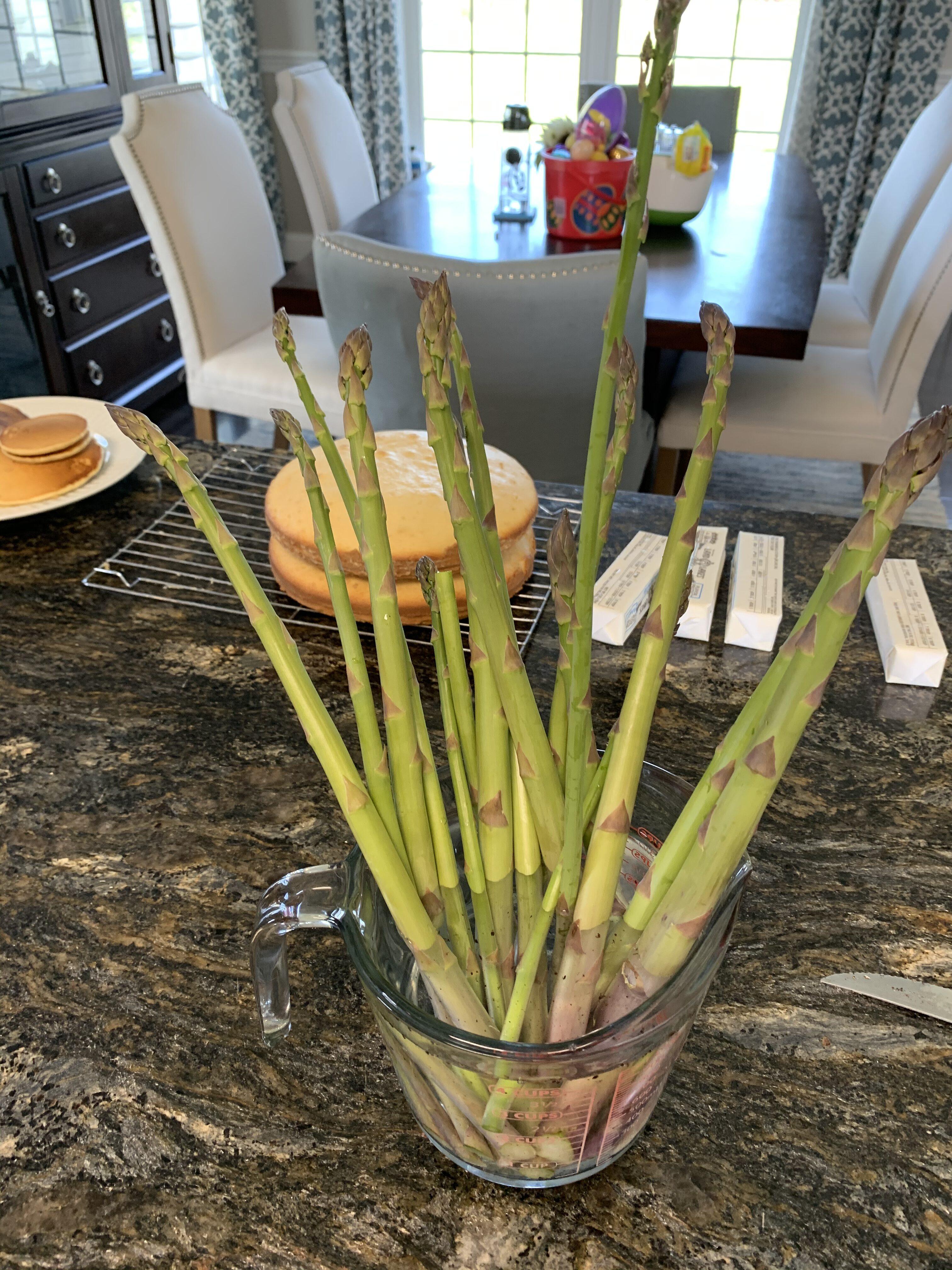 EDB440CE FE4F 49B0 B852 C4104CF544DD How to double or triple your asparagus yield