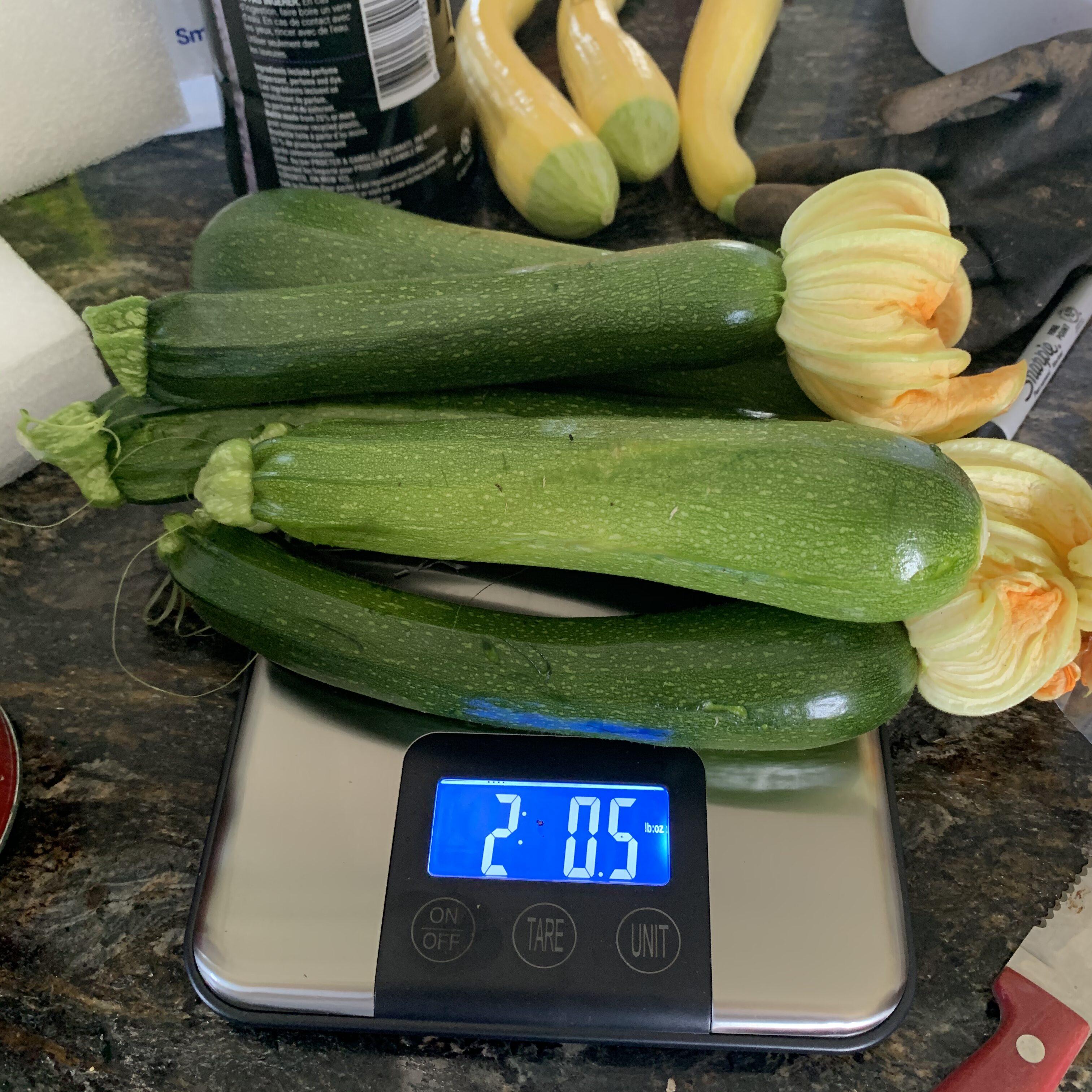 F9CAB618 7CB5 4C70 BD88 CA9A9900E5BB Fourth of July Tomato!
