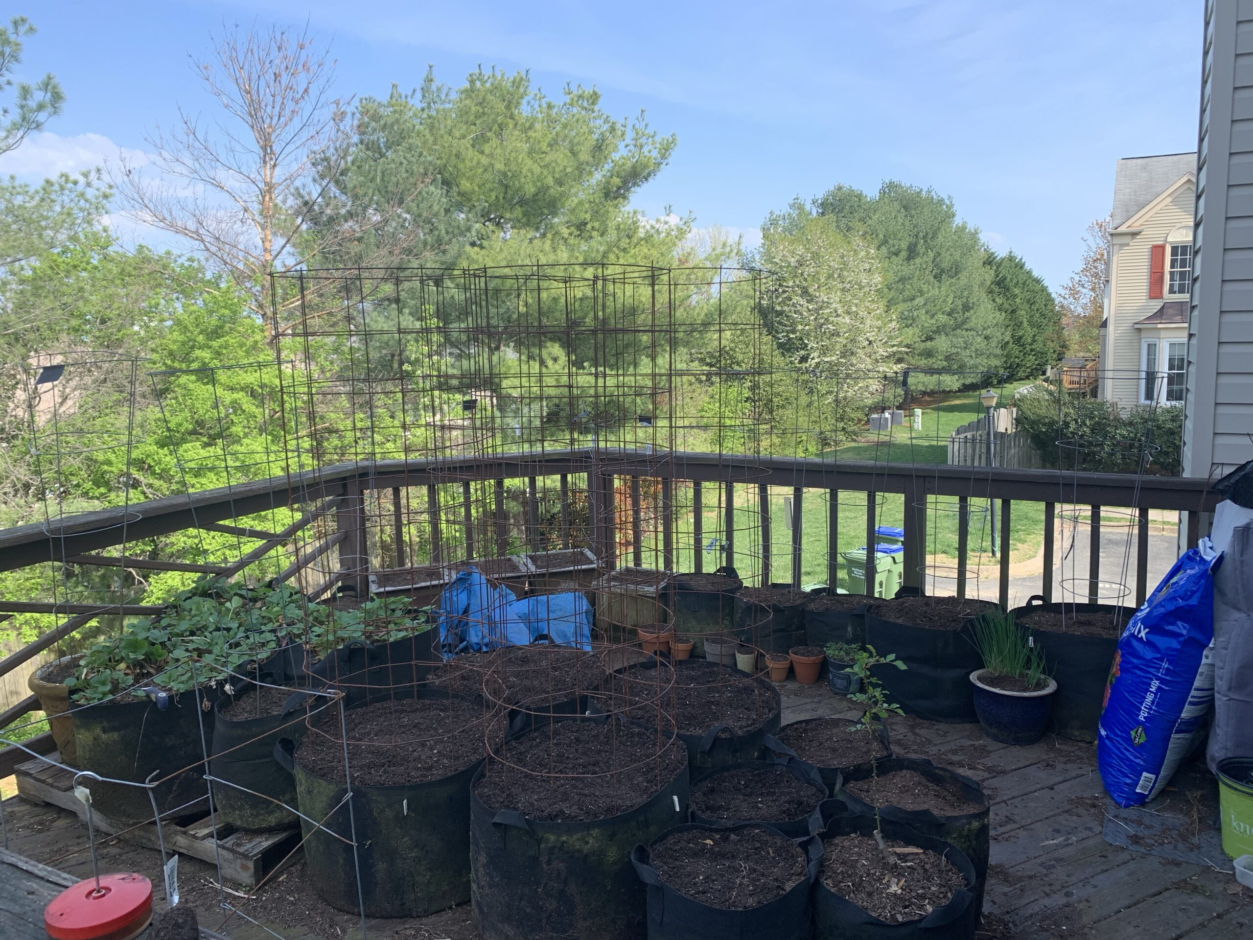 img 5272 scaled Deck Garden Refresh