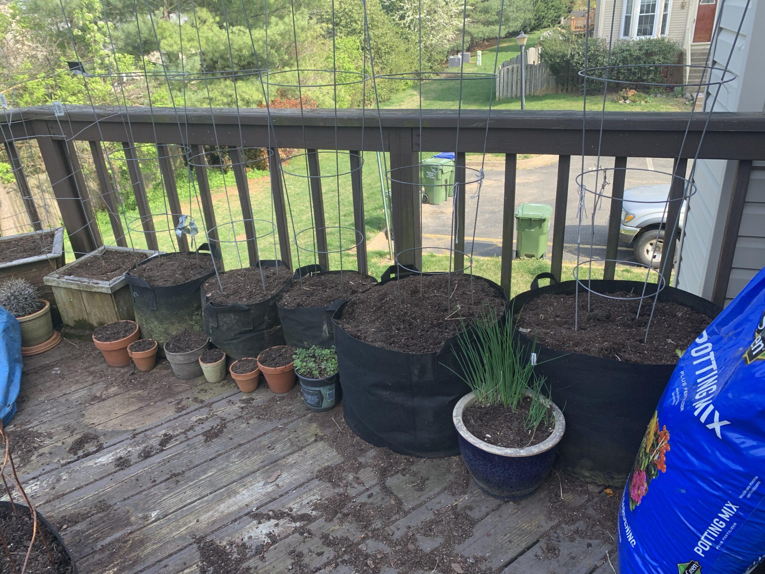 img 5277 scaled Deck Garden Refresh